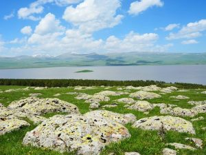 Lake Arpi National Park